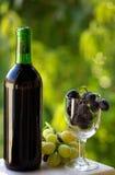 Bouteille de vin rouge et de raisins. Images stock