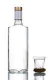Bouteille de vodka Photographie stock libre de droits