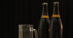 Bouteille deux de bière froide sur un fond noir Verre à boire et pistaches banque de vidéos