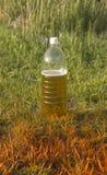 Bouteille en plastique avec de la bi?re photos stock