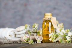 Bouteille en verre d'extrait d'huile de marron d'Inde photo libre de droits