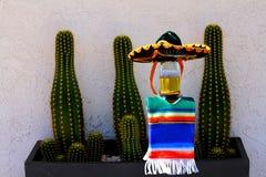 Bouteille et cactus à bière de Cinco de Mayo