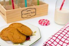 Bouteille et Ginger Cookies à lait Images stock