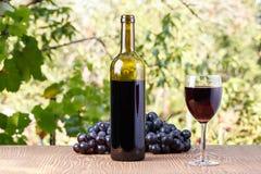 Bouteille et une glace de vin Photographie stock