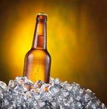 Bouteille froide de bière dans les glaçons image libre de droits