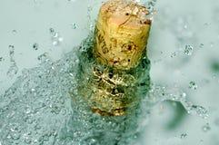 Bouteille glaciale de vin Photographie stock