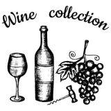 Bouteille, verre à vin, raisins, tire-bouchon Collection de vin de lettrage Images stock