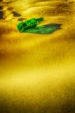Bouteille verte vide sur le sable Photographie stock libre de droits