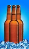 Bouteilles à bière photo stock