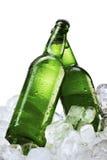 Bouteilles à bière sur des glaçons Image libre de droits
