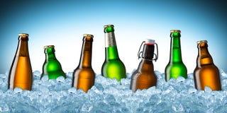 Bouteilles à bière sur la glace Photos stock
