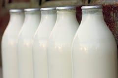 Bouteilles à lait Photographie stock libre de droits