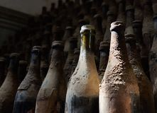 Bouteilles âgées de vin dans la cave photos libres de droits