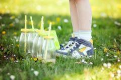 Bouteilles avec du jus avec les pailles colorées, se couchant sur l'herbe Images libres de droits