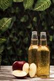 Bouteilles avec le cidre près du panier avec des pommes Photo stock