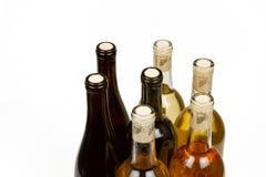 Bouteilles colorées de vin avec le fond blanc Photo libre de droits