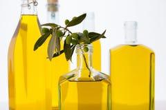 Bouteilles d'huile d'olive sur le fond blanc Photos stock