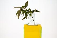 Bouteilles d'huile d'olive sur le fond blanc Images libres de droits