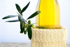 Bouteilles d'huile d'olive sur le fond blanc Image libre de droits