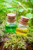 Bouteilles d'huile essentielle ou de breuvage magique magique sur la mousse Photo libre de droits