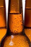 Bouteilles de bière Image stock