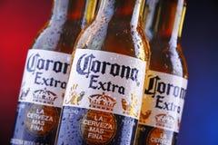 Bouteilles de bière de Corona Extra photographie stock libre de droits