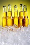 Bouteilles de bière froide et fraîche avec de la glace Photo stock