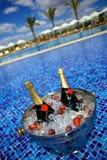 Bouteilles de Champagne sur la glace dans une piscine Image stock