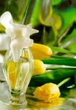 Bouteilles de Cologne/parfum Photo stock