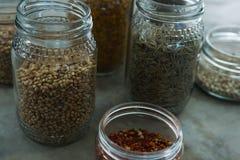 Bouteilles de diverses épices Image stock