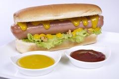 Bouteilles de ketchup et de moutarde à l'arrière-plan Images stock