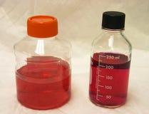 Bouteilles de laboratoire avec des medias rouges Photos stock