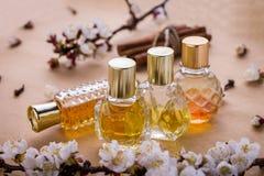 Bouteilles de parfum avec des ingrédients Image libre de droits