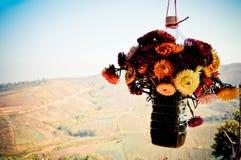 Bouteilles de plastique de fleur Photo stock