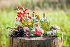 Bouteilles de teinture, d'herbes saines et de baies Photos stock