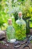 Bouteilles de teinture des herbes curatives et des herbes médicinales Photographie stock libre de droits