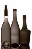 Bouteilles de vin Images stock