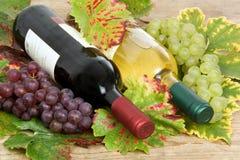 Bouteilles de vin avec des feuilles de vin Images stock