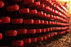 Bouteilles de vin dans la cave photographie stock