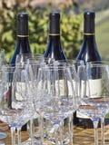 Bouteilles de vin et de verres avec la campagne de Langhe au b photos stock