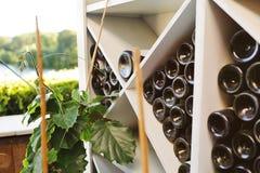 Bouteilles de vin sur les étagères dans la perspective du raisin images stock