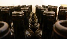 Bouteilles de vin vides stockées photos libres de droits