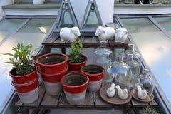 Bouteilles en verre décoratives Photo stock