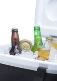 Bouteilles et bidons à bière assortis dans le refroidisseur Photo libre de droits