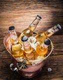 Bouteilles froides de bière dans le seau d'airain photo libre de droits
