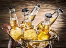 Bouteilles froides de bière dans le seau d'airain image libre de droits