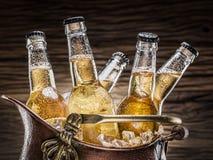 Bouteilles froides de bière dans le seau d'airain photos libres de droits
