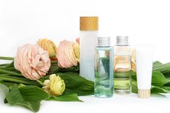 Bouteilles r?utilisables avec le liquide sur les fleurs roses jaunes de ranunculus et le fond vert de feuilles images stock