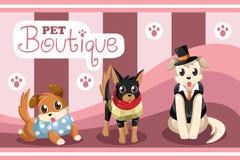 Boutique d'animal familier Photo stock