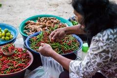 Boutique de poivre de piment Photographie stock libre de droits